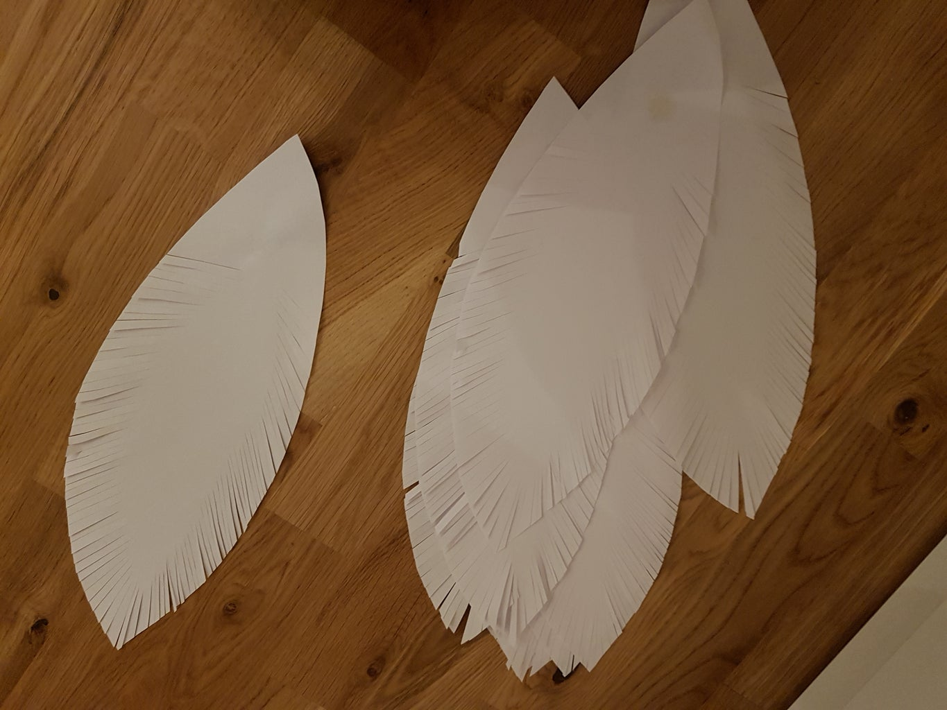 Cutting Feathers