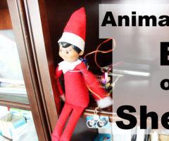 Animated Smart Elf on a Shelf with the Raspberry Pi Servo Controller