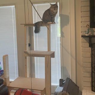 Classy Cat Tower