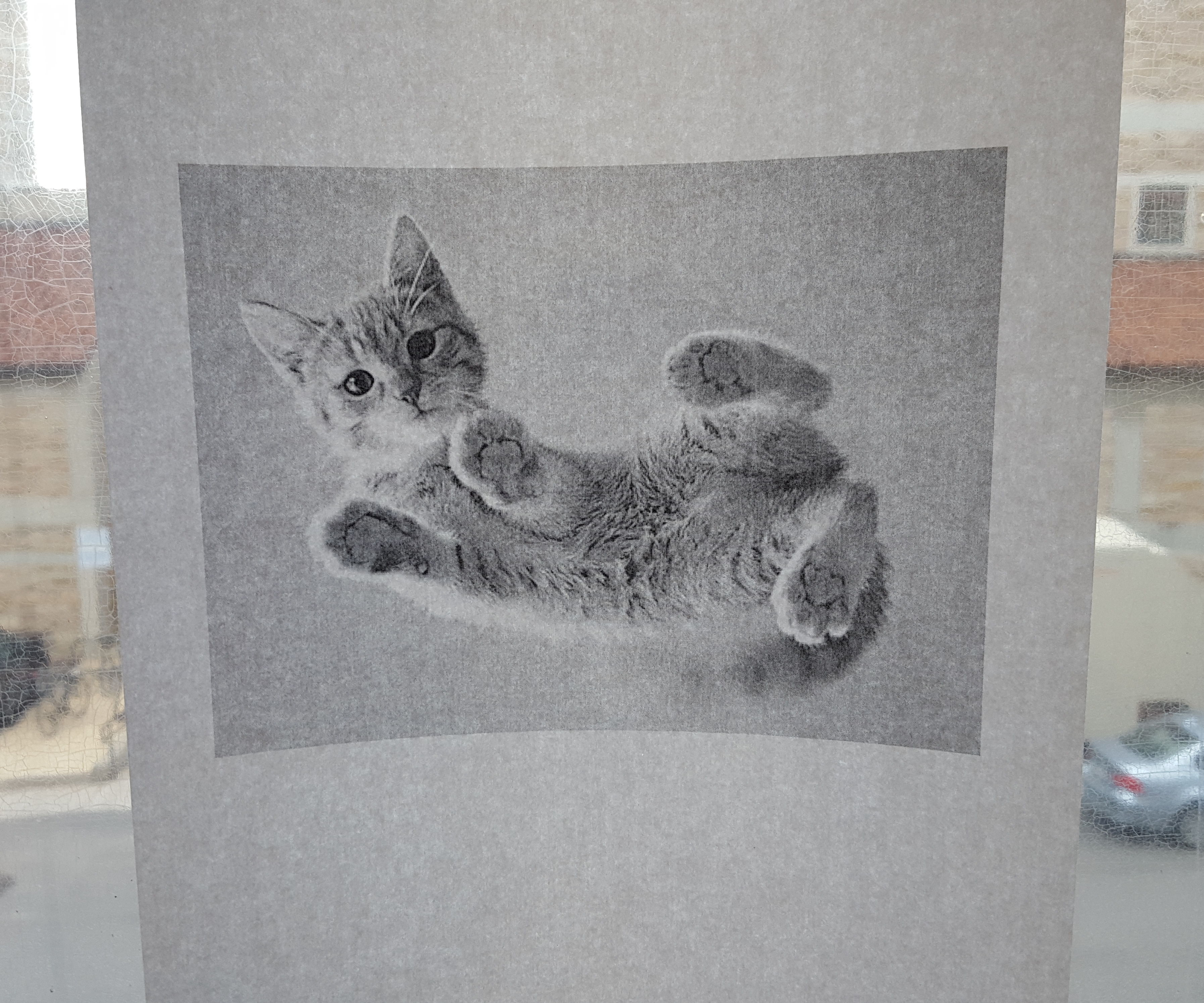 Augment Your Printer - the Print-a-Cat Button