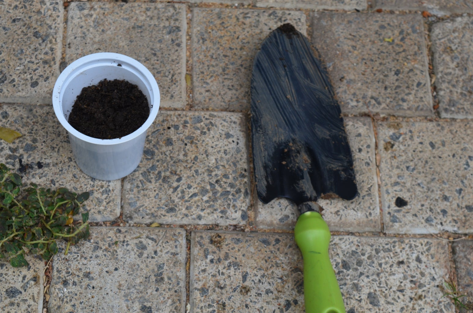 Preparing the Pot for Nursery