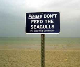 Keep Seagulls Away!