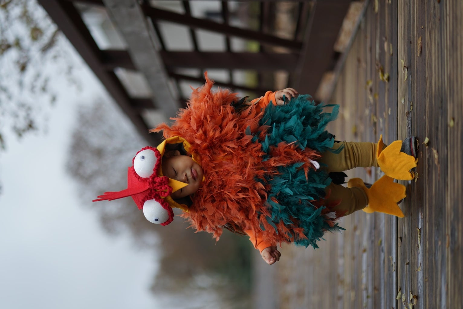 How to Make a Rooster Costume