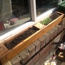Window planter made from old pallet. window sill herb garden