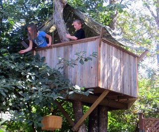如何建造树屋