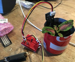 Internet of Dirt: a Texting Plant