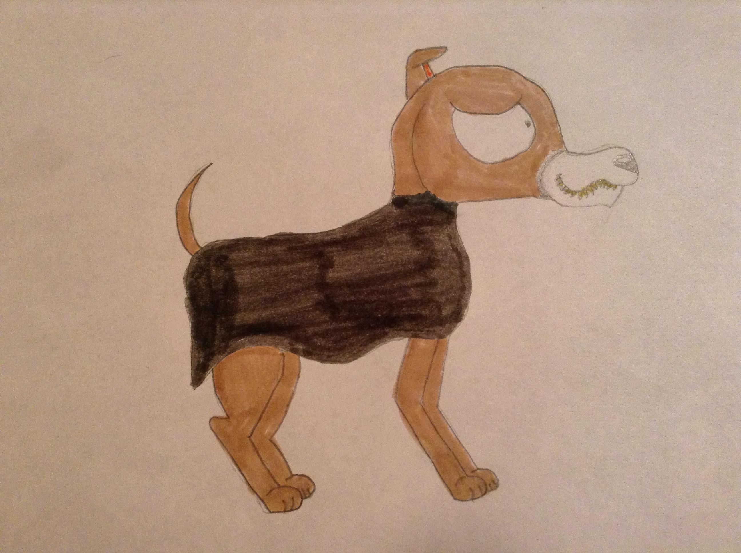 How To Draw Kokonut The Dog