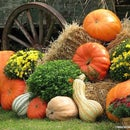 How to Create a Fall Outdoor Display