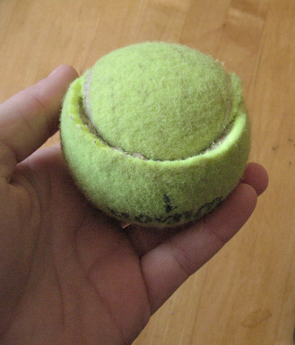 Easy & Cheap Dog Toy