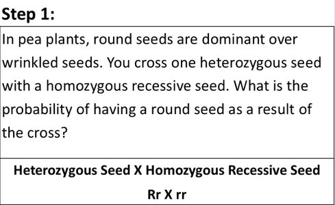 Identify the Genotypes That Are Being Crossed