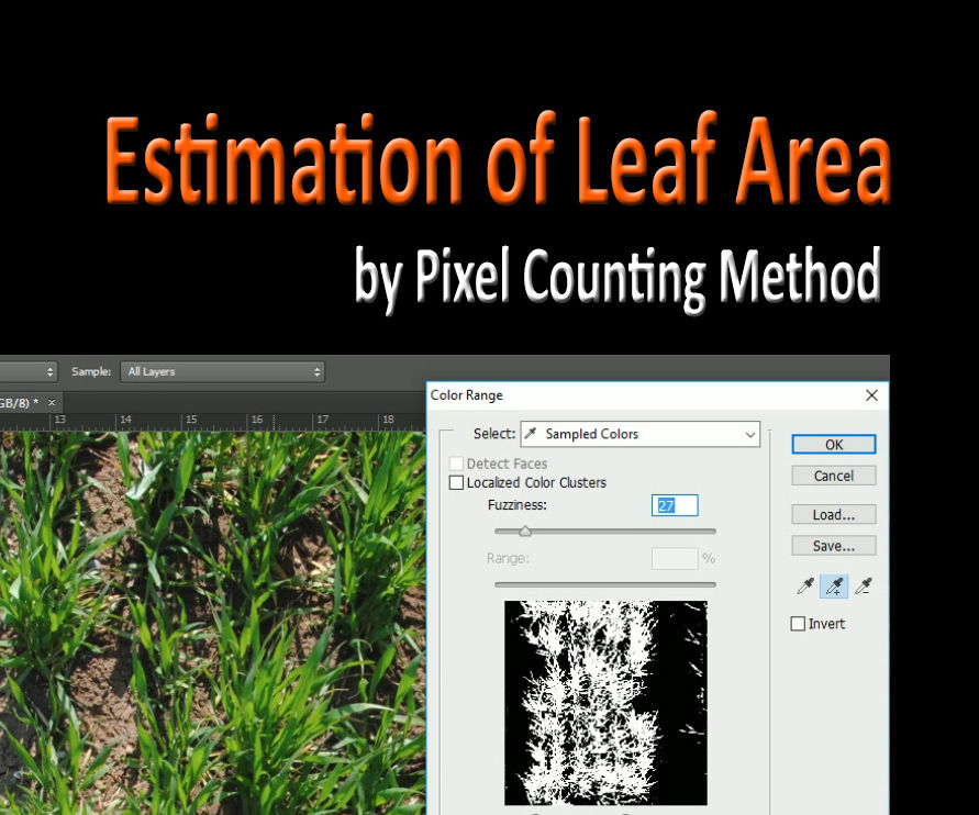 Estimation of leaf area by Pixel Counting Method in Photoshop CS6
