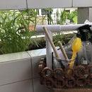 Gardening Tools Carrier
