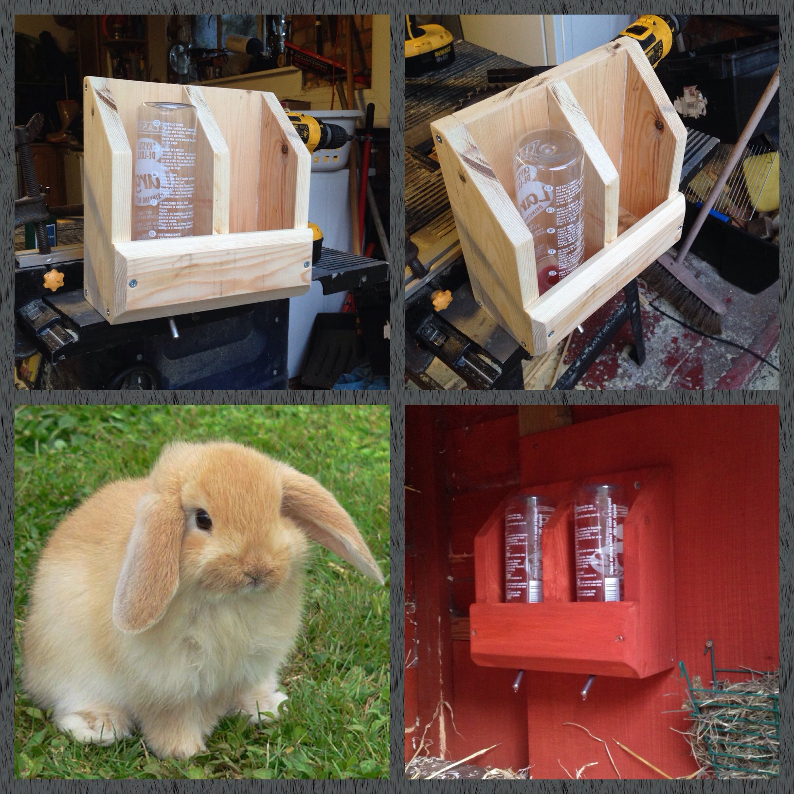 Bunny Rabbit Hydration Station Made From Scrap Wood