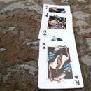 Royal Family Card Trick