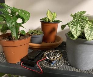 Plant Care With IOT