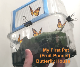 My First Pet: Caterpillar - Butterfly House (Up-Cycle 2 Fruit Punnets)