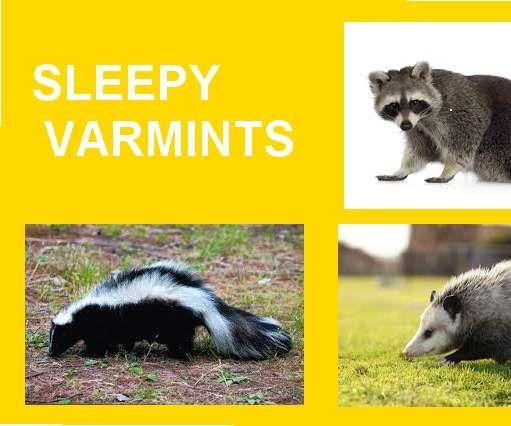 PUT YOUR VARMINTS TO SLEEP