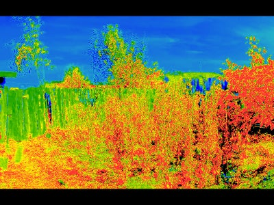 Testing the NoIR Camera and NDVI Imaging