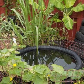 Garden 080328 (4).jpg