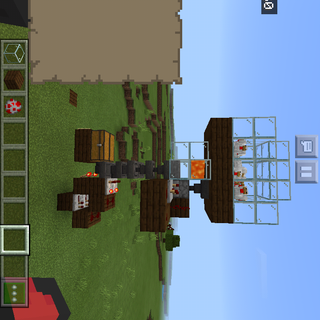 Automatic Chicken Farm & Sorting System