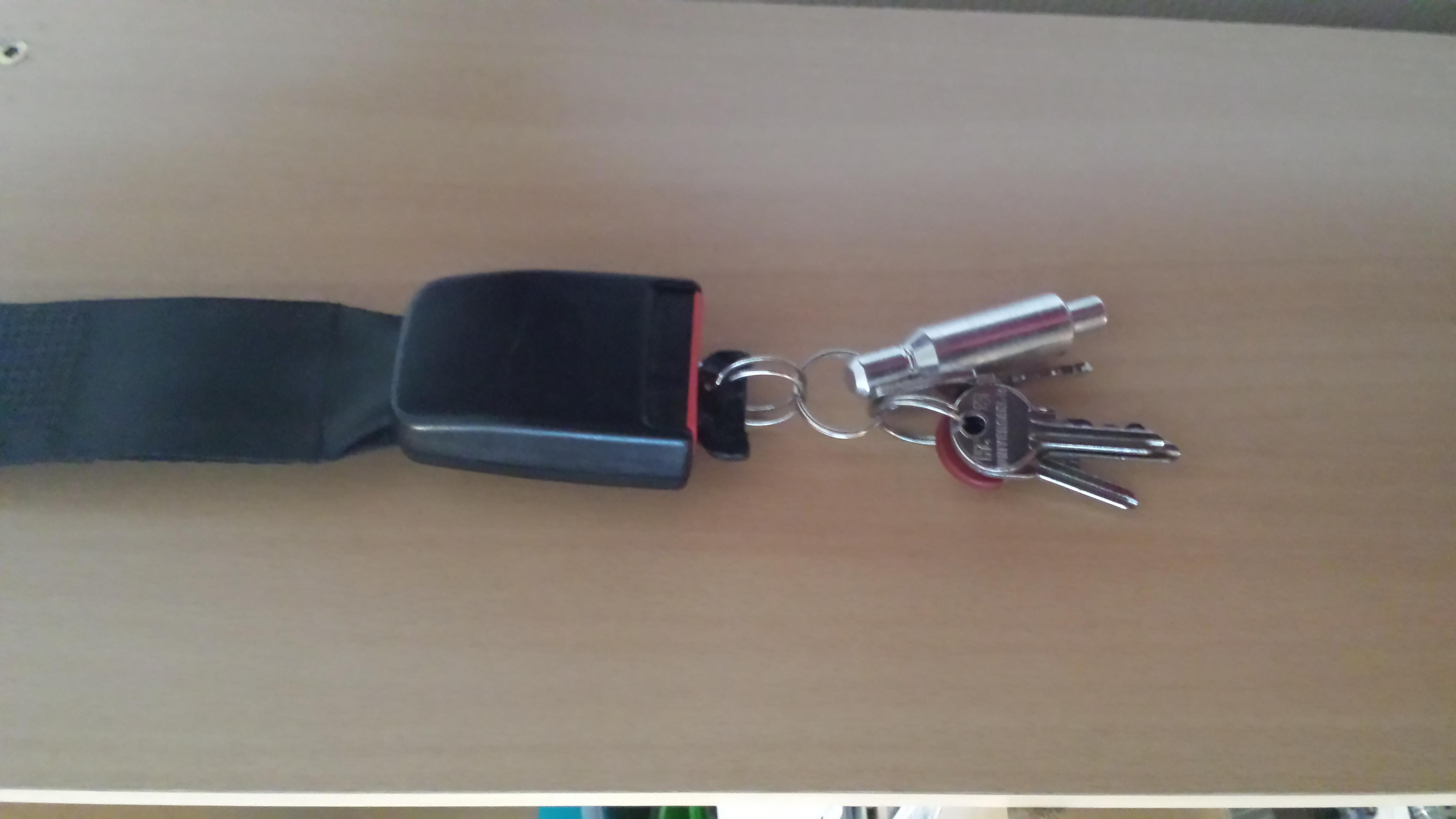Seatbelt key organizer
