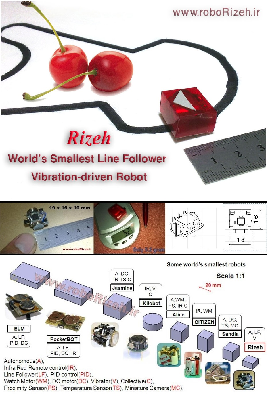 How to make world's smallest line follower robot (robo Rizeh)