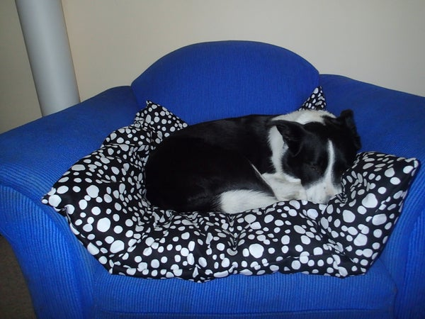 Giant Pillow Pet Bed!