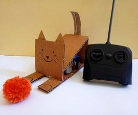 RC Cardboard Cat
