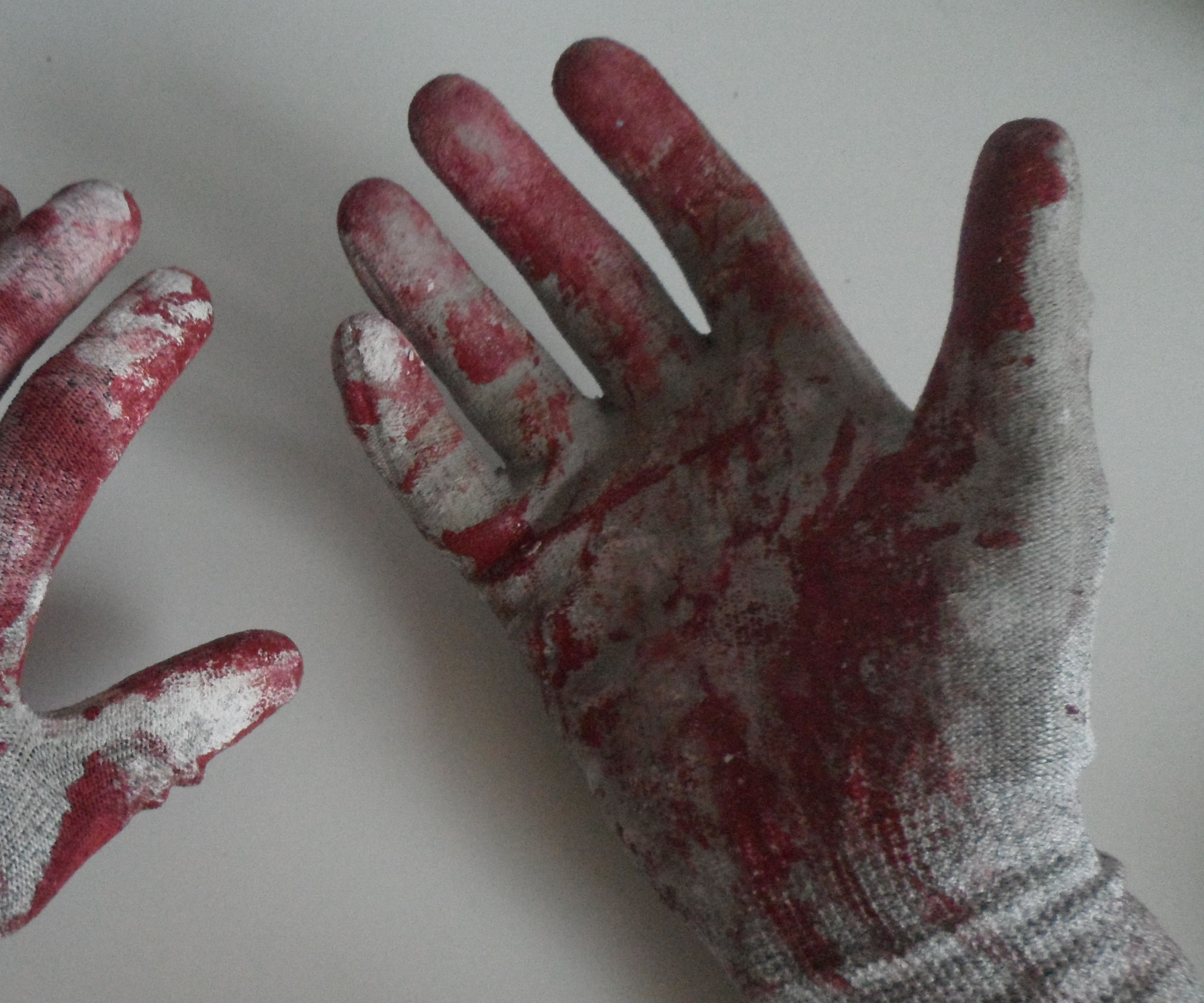 Bloodied Gloves