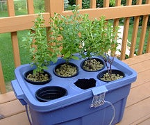 Phase 1 of Hydroponic Planter: Parts