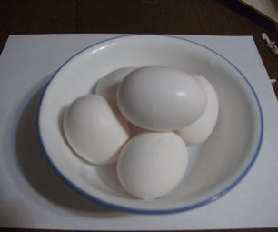 How to Egg Battle