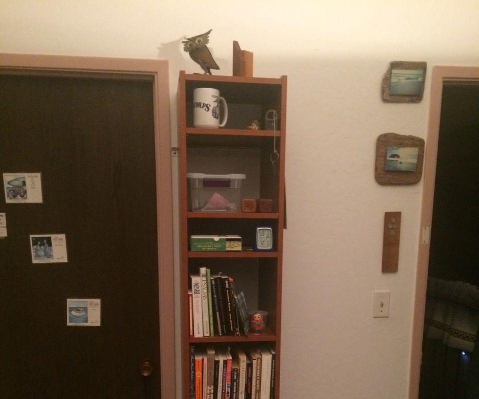 Closet Organizer Into Hanging Bookshelf Mod.