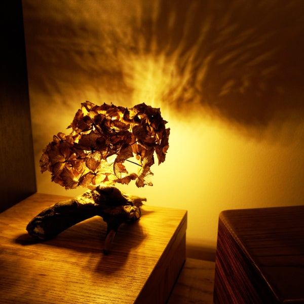 Make a Beautiful Petal-Light