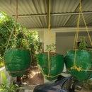 Coconut Husk Gardening Pot