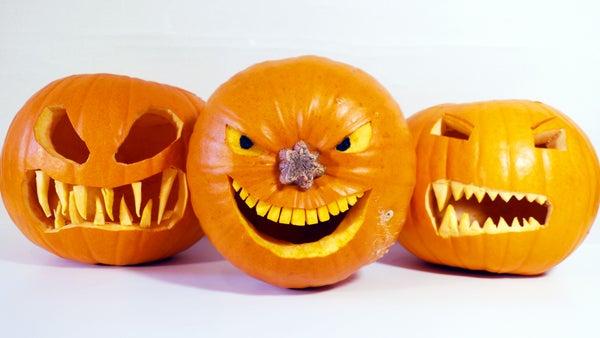 Five Top Halloween Pumpkin Tips