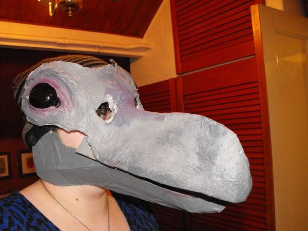 Halloween Crow Costume