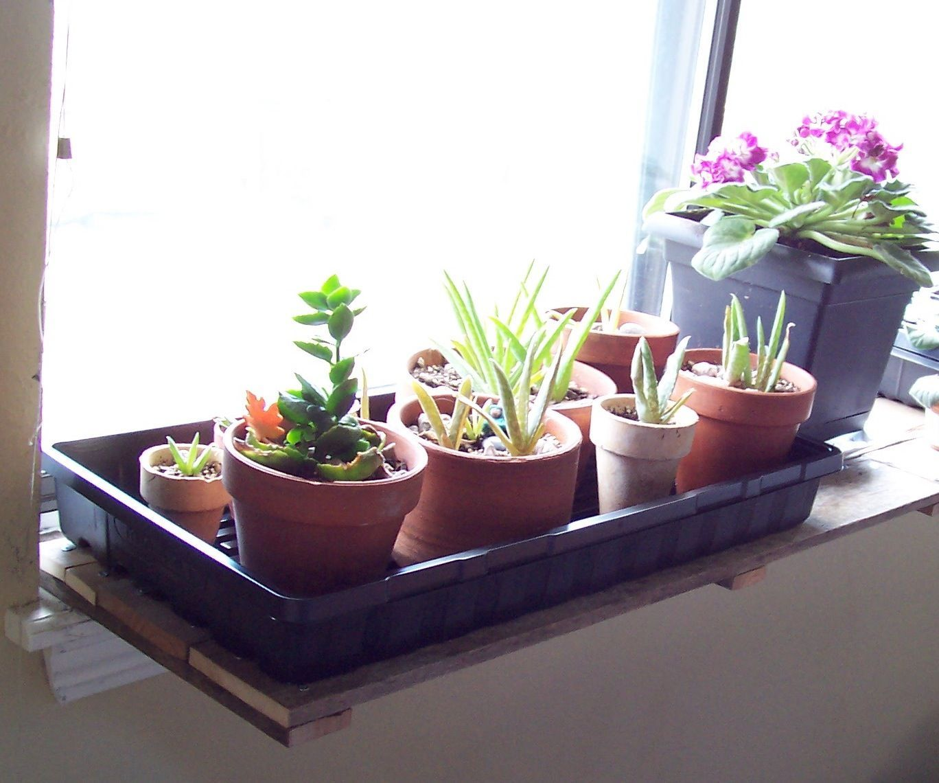 Pallet Wood Window Sill Plant Shelf 7 Steps Instructables