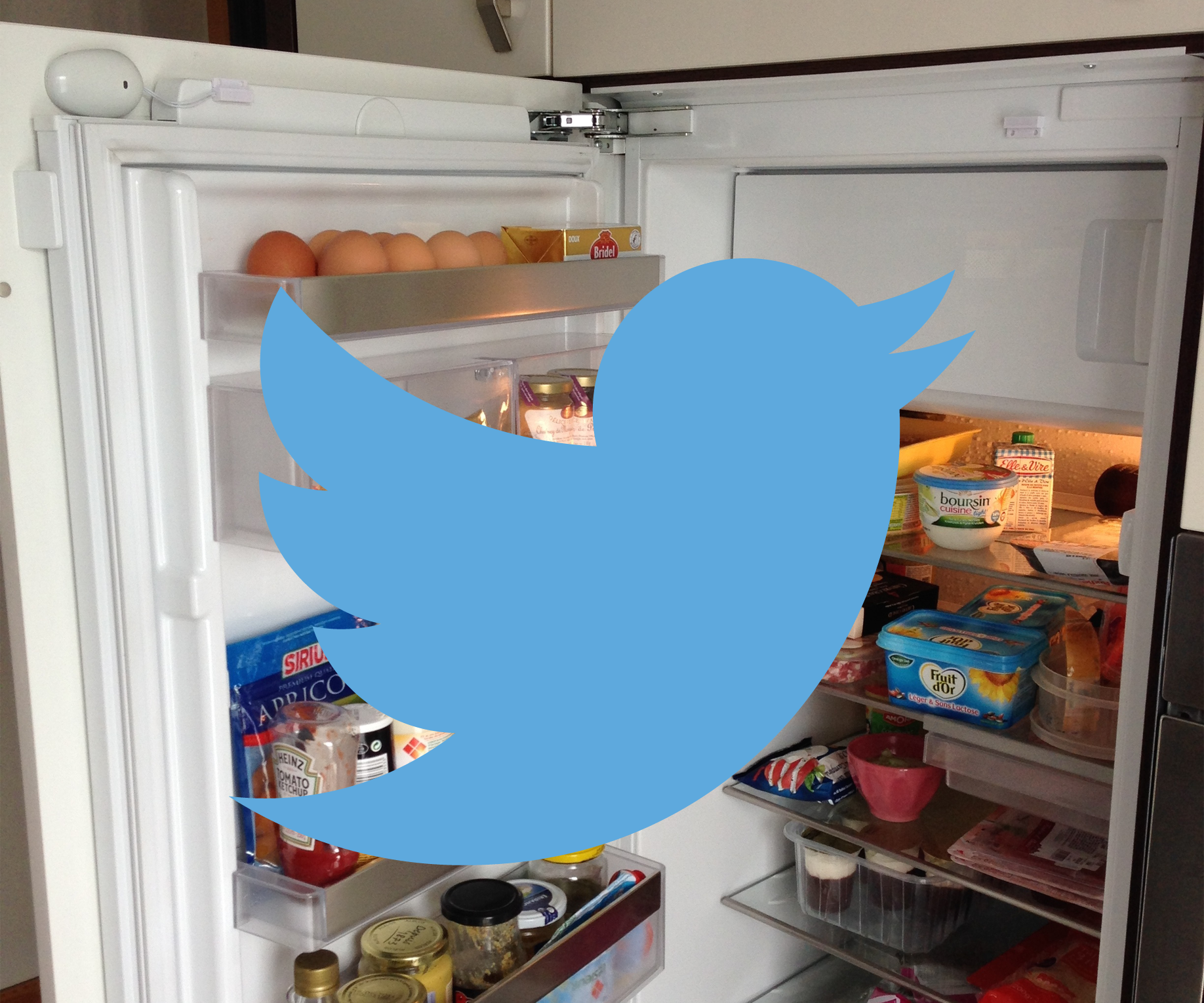 Connect your fridge to Twitter