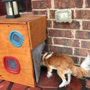 Doggie Door Vestibule