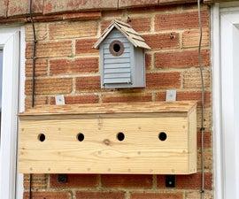 🐦 House Sparrow 🐦 Bird Box Terrace 🐦
