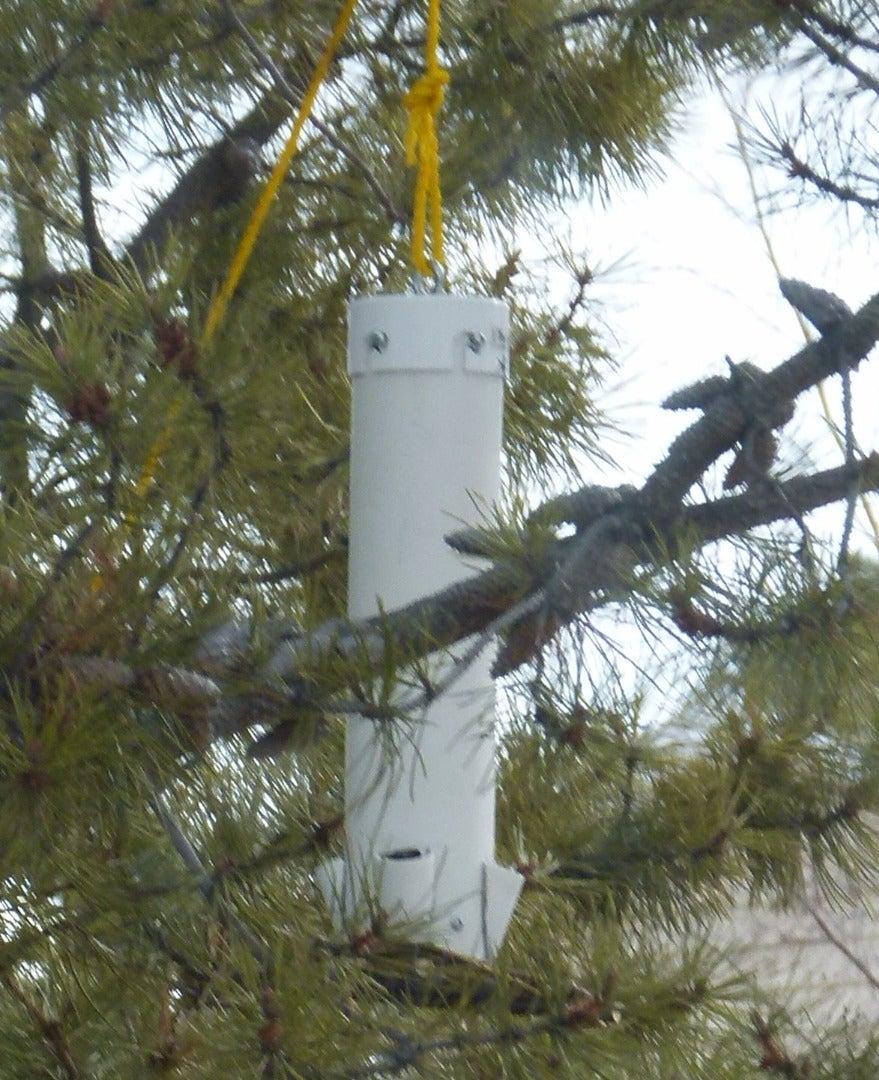 Squirrel Proof Bird Feeder