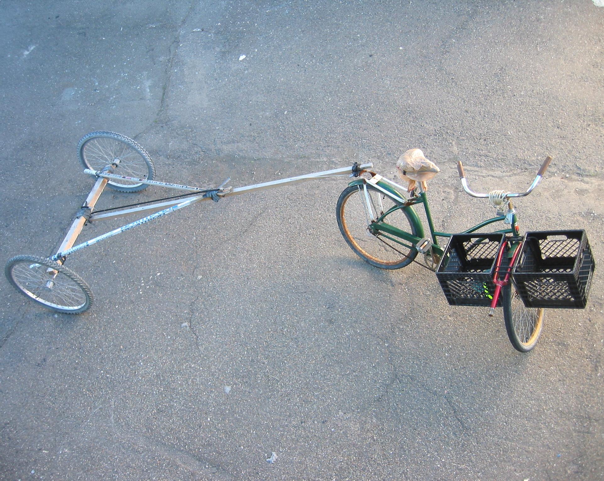Bike Trailer and Cargo Bike