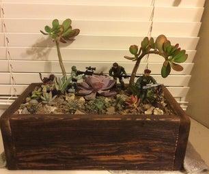 Easy, Cheap Cactus/Desert Terrarium