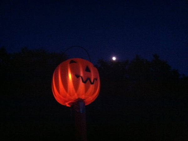 Solar Pumpkin Stakes