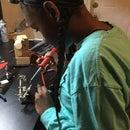 roboticistintraining