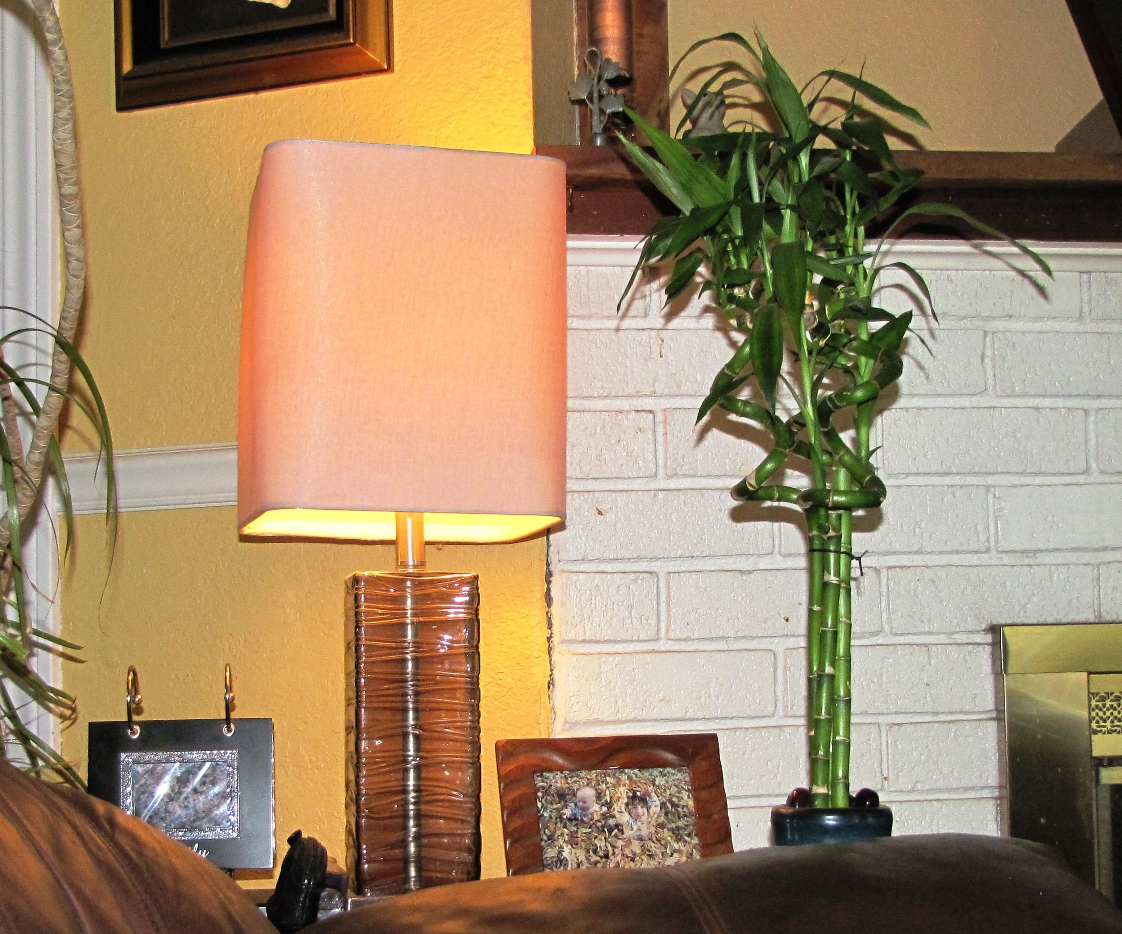 Turn a House Plant into a Light Switch