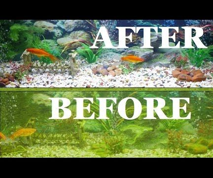 Complete Aquarium Clean / Fish Tank Clean out
