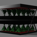 My Diary Growing Greens in Space!