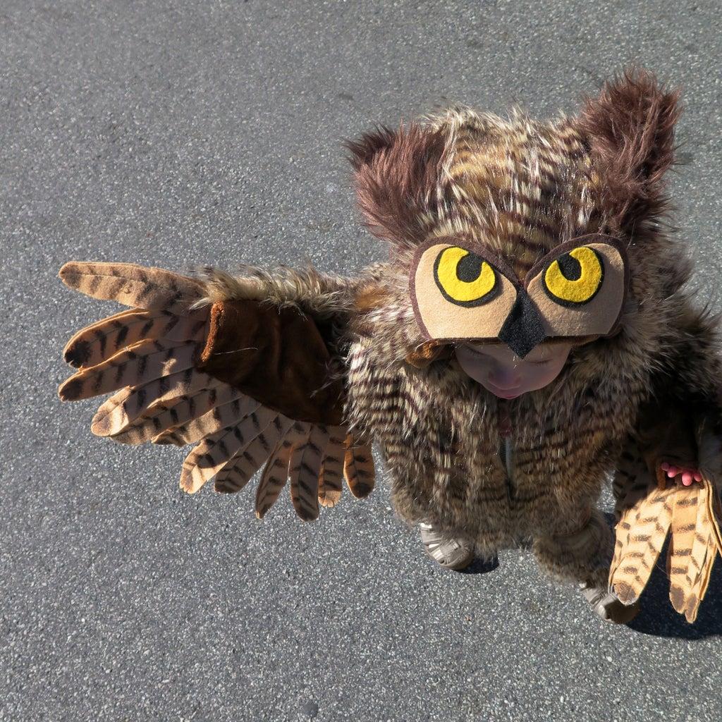 Make an Owl Costume