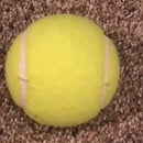 Cut the Ball